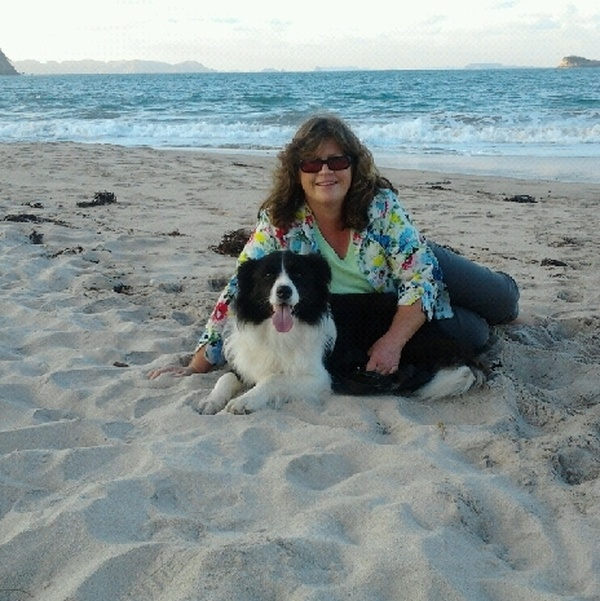 Housesitting assignment in Coromandel, New Zealand