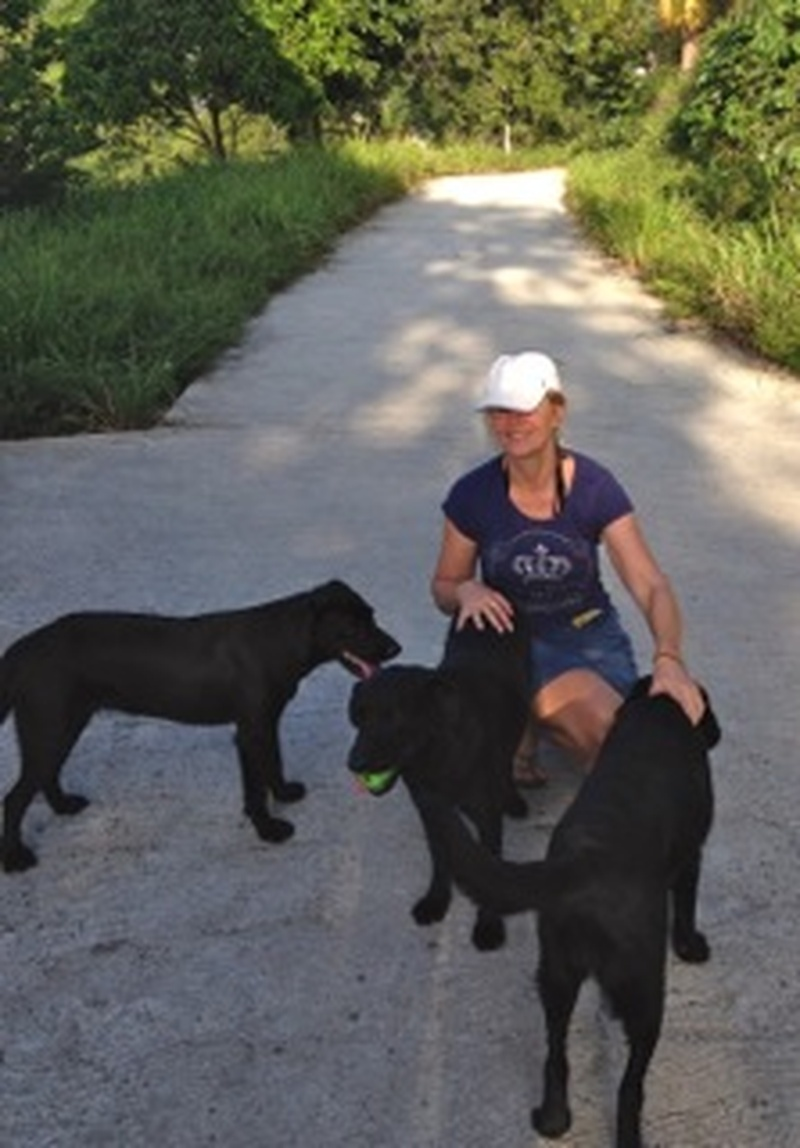 Their current house/pet sit in Saint Lucia with Tizzy, Lucky and Shadow