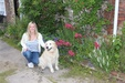House & Pet Sitters from Royal Tunbridge Wells, Kent, UK