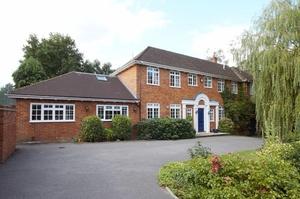 Housesitting assignment in Woking, Surrey, UK
