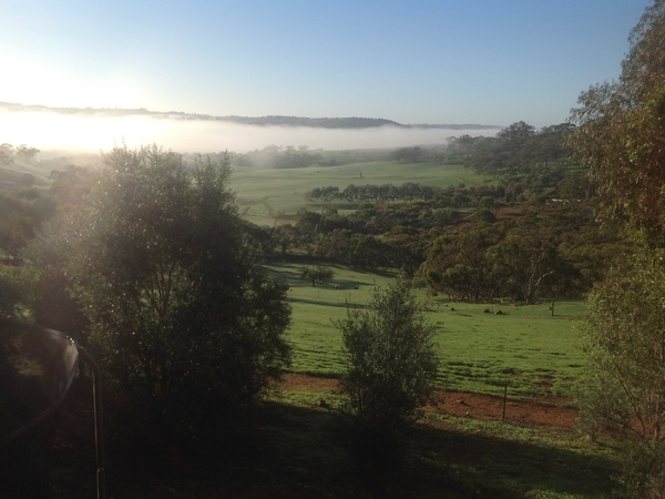 Housesitting assignment in Coondle, WA, Australia