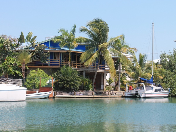 Housesitting assignment in Placencia, Belize