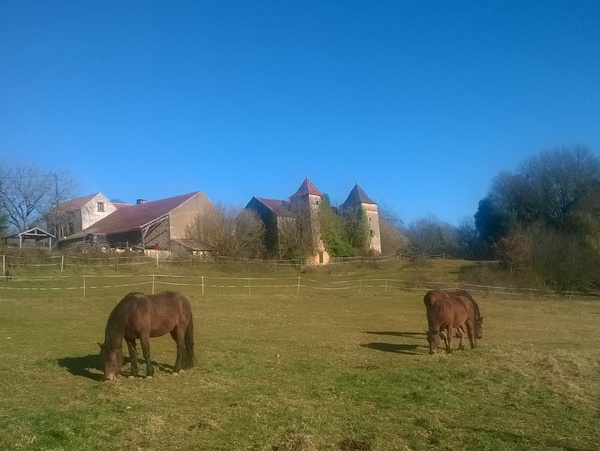 Housesitting assignment in Cazals, France