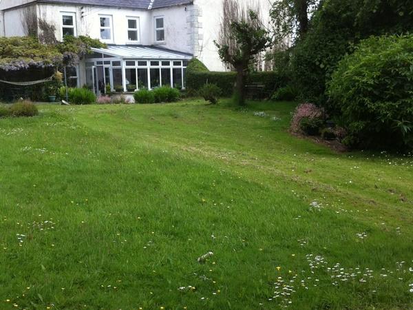 Housesitting assignment in Downpatrick, United Kingdom
