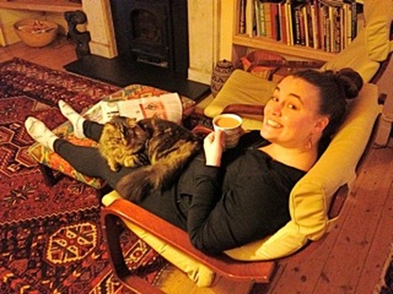 Kit with the lap cat