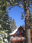 Housesitting assignment in Truckee, CA 96161, USA