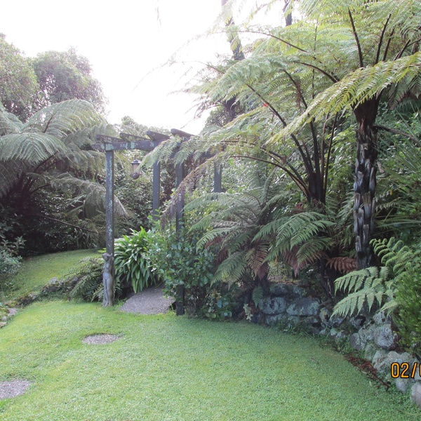 Housesitting assignment in Greymouth, New Zealand