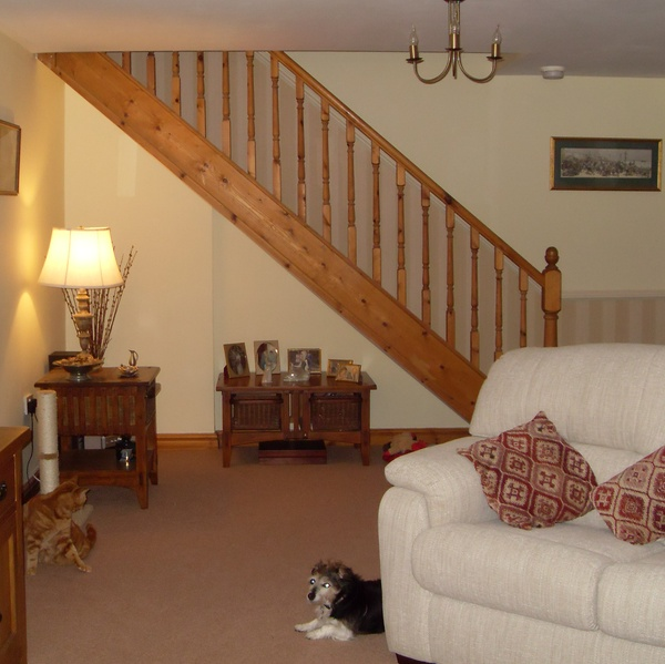 Housesitting assignment in Haverfordwest, Pembrokeshire, UK