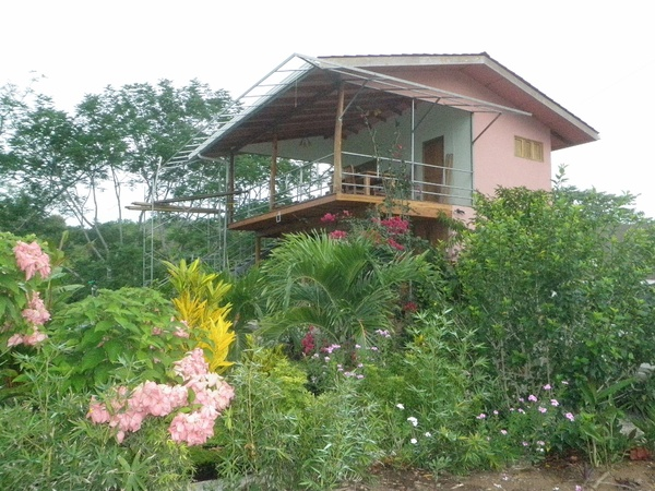 Housesitting assignment in Montezuma, Costa Rica