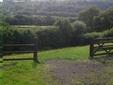 Housesitting assignment in Caerphilly, UK