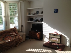 Housesitting assignment in Brighton, The City of Brighton and Hove, UK