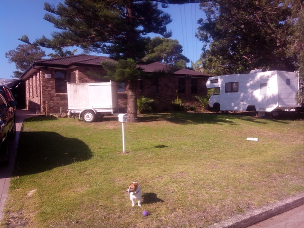 Housesitting assignment in Warilla, NSW, Australia