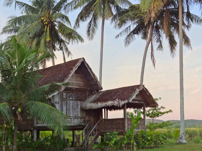 House sitting job in Langkawi