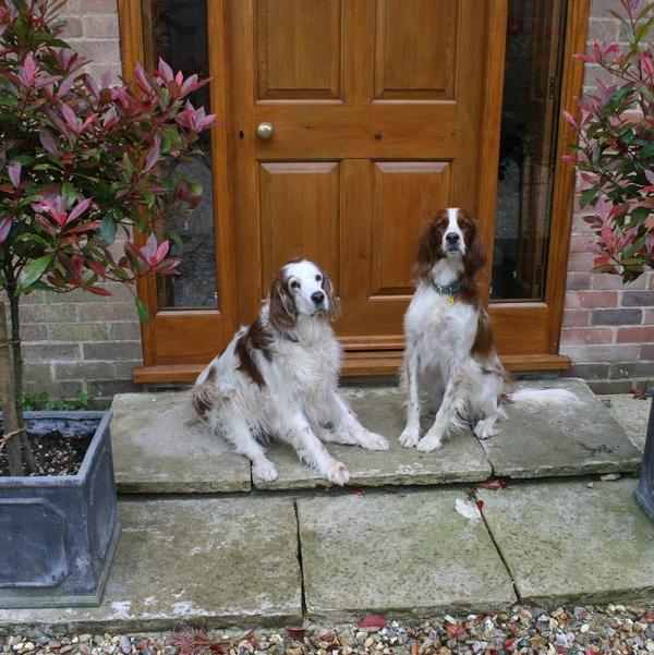 Housesitting assignment in Brill, Buckinghamshire HP18, UK