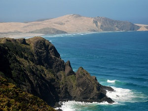 More on Northland, New Zealand
