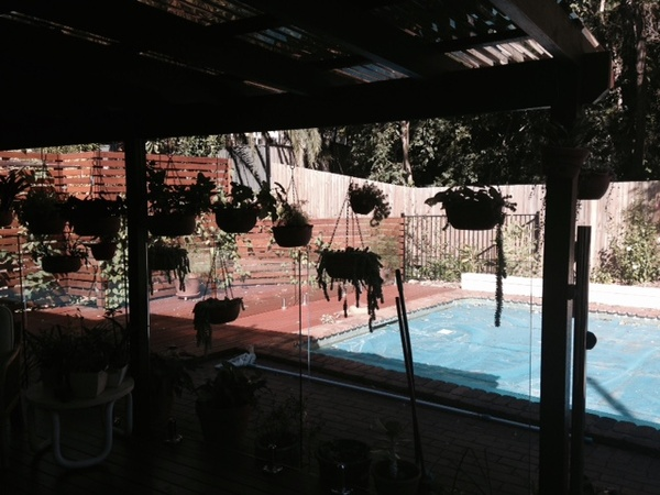 Housesitting assignment in Brisbane, QLD, Australia