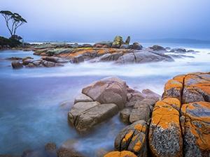 More on Tasmania, Australia