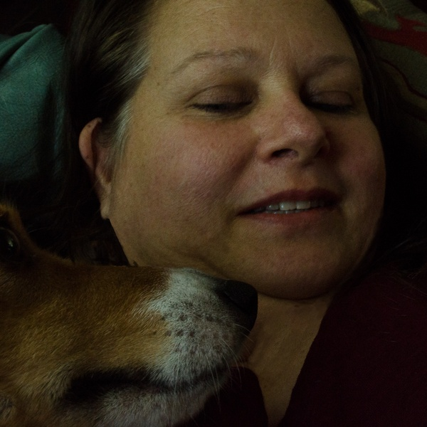 House & Pet Sitters from Cherry Hill, NJ, USA - Image 2 - 95c6dfb5e501abcc63630ad619ce228b