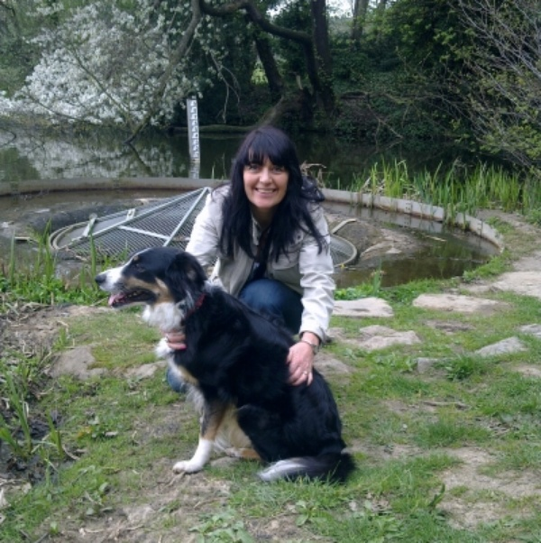 House & Pet Sitters from Derby, UK - Image 1