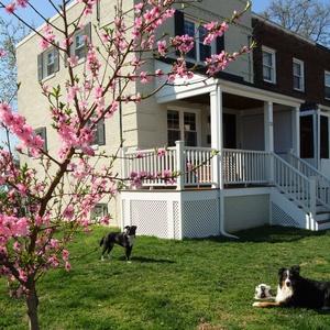 House sitting job - Alexandria, VA, United States