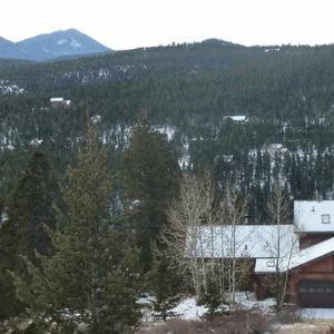 House sitting job - Nederland, Colorado, United States