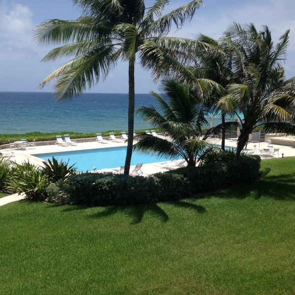 Housesitting in Cayman Islands