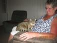 House & Pet Sitters from Devon, UK