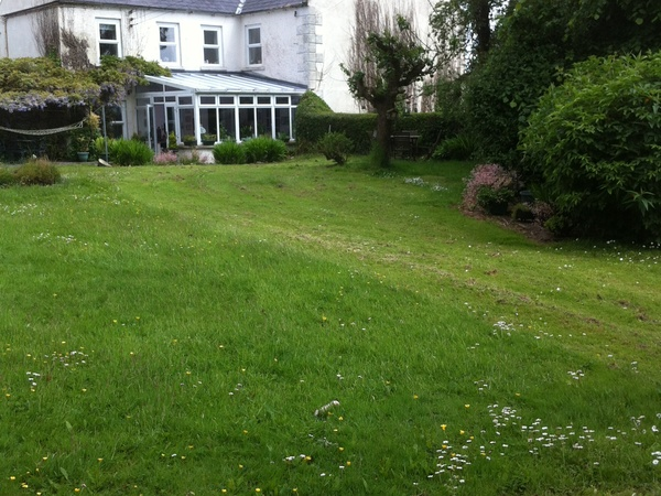 Housesitting assignment in Downpatrick, United Kingdom
