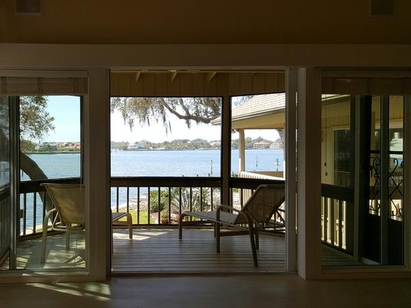 Housesitting assignment in Sarasota, FL, United States