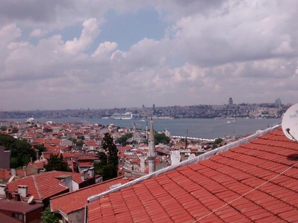 Housesitting assignment in Uskumruköy, Turkey