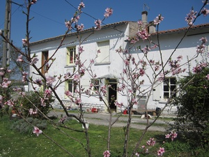 Housesitting assignment in Fontaine-Chalendray, France