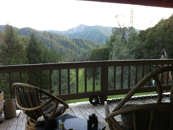 Housesitting assignment in Douglas City, CA, United States