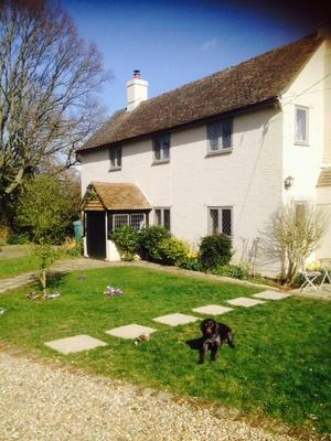 Housesitting assignment in Hailsham, East Sussex, UK