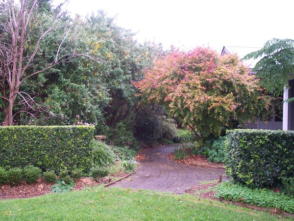 Housesitting assignment in Berry, NSW, Australia