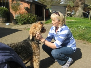 House & Pet Sitters from Mistley, Essex, UK - Image 3