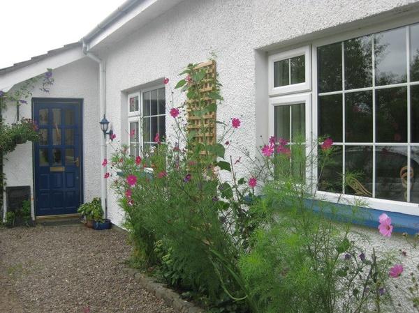 Housesitting assignment in Crossgar, United Kingdom