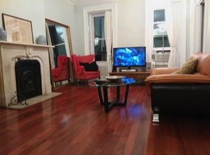 Housesitting assignment in Manhattan, New York, NY, USA
