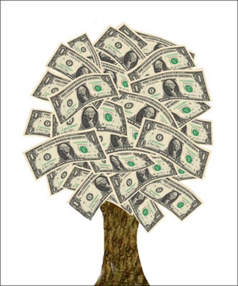 Sadly money doesn't grow on trees but you don't need it to when you're not paying for accommodation!