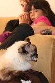 House & Pet Sitters from Dominicalito, Costa Rica