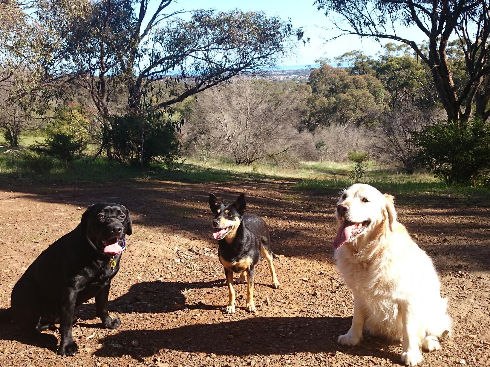 Jane & Andy from Adelaide, South Australia, Australia