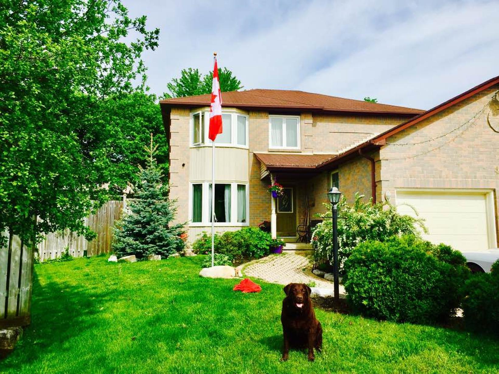 Housesitting assignment in Oshawa, Ontario, Canada