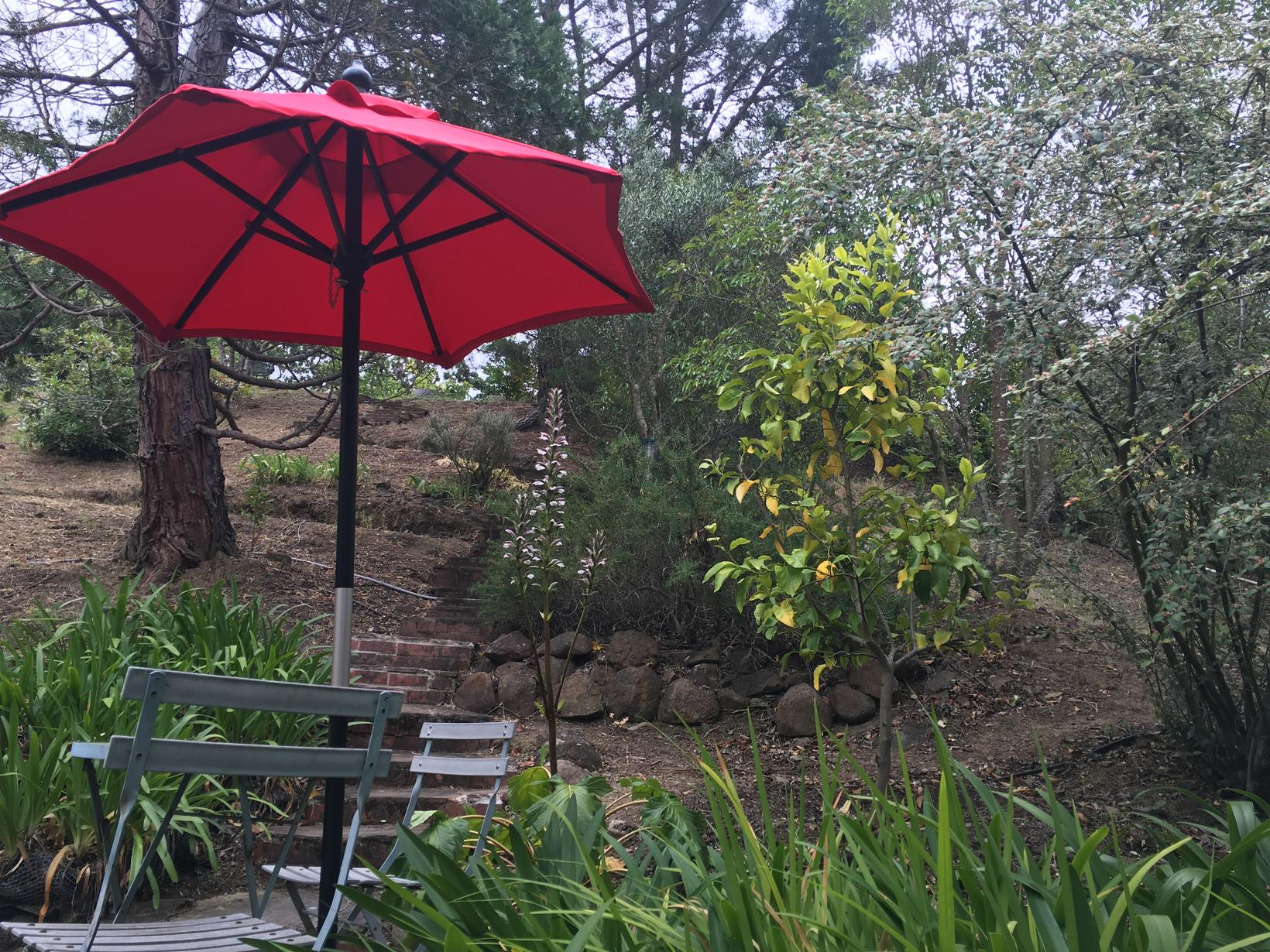 Housesitting assignment in Novato, California, United States