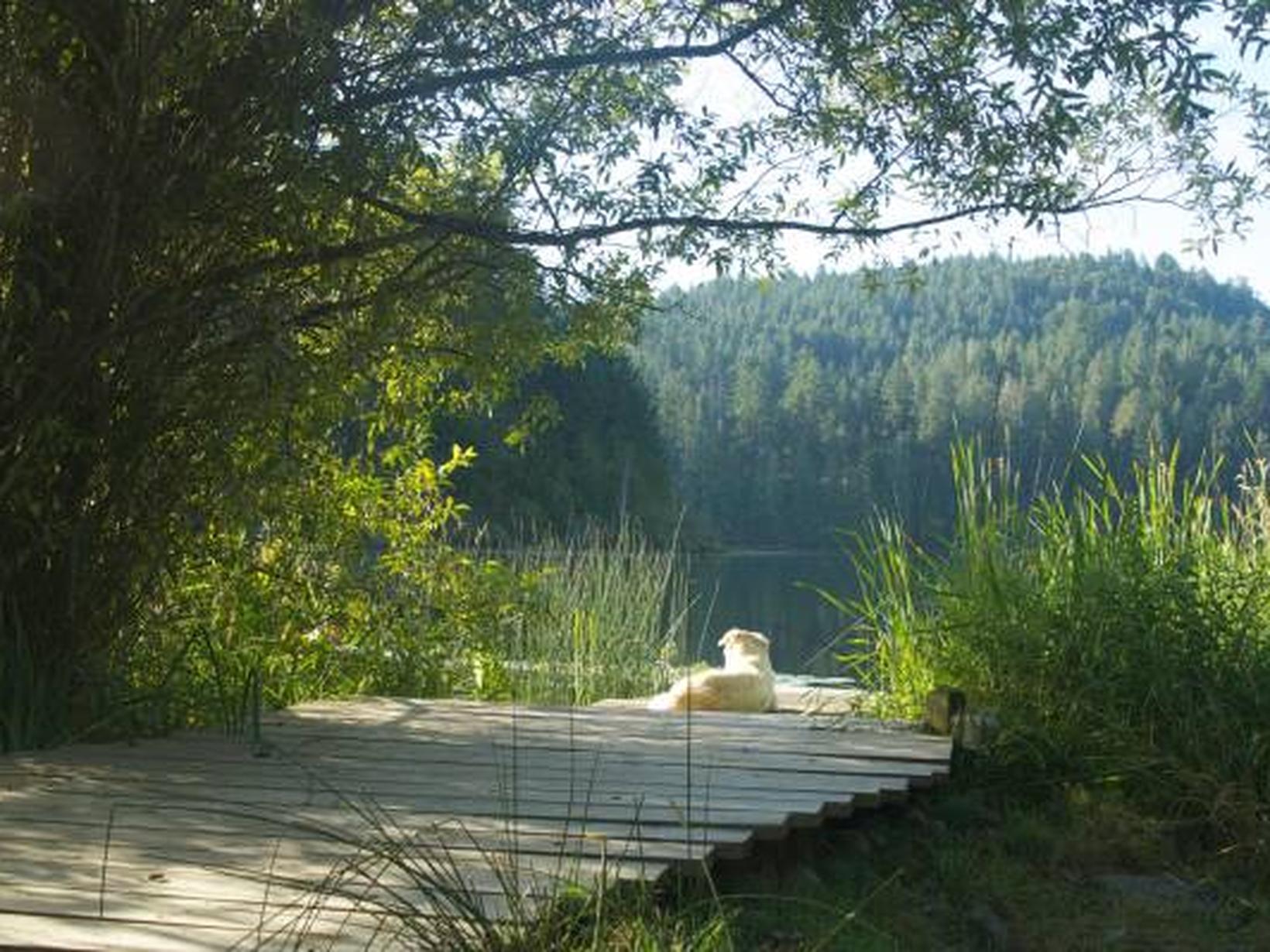 Charming Home on Salt Spring Island | Victoria, British ...