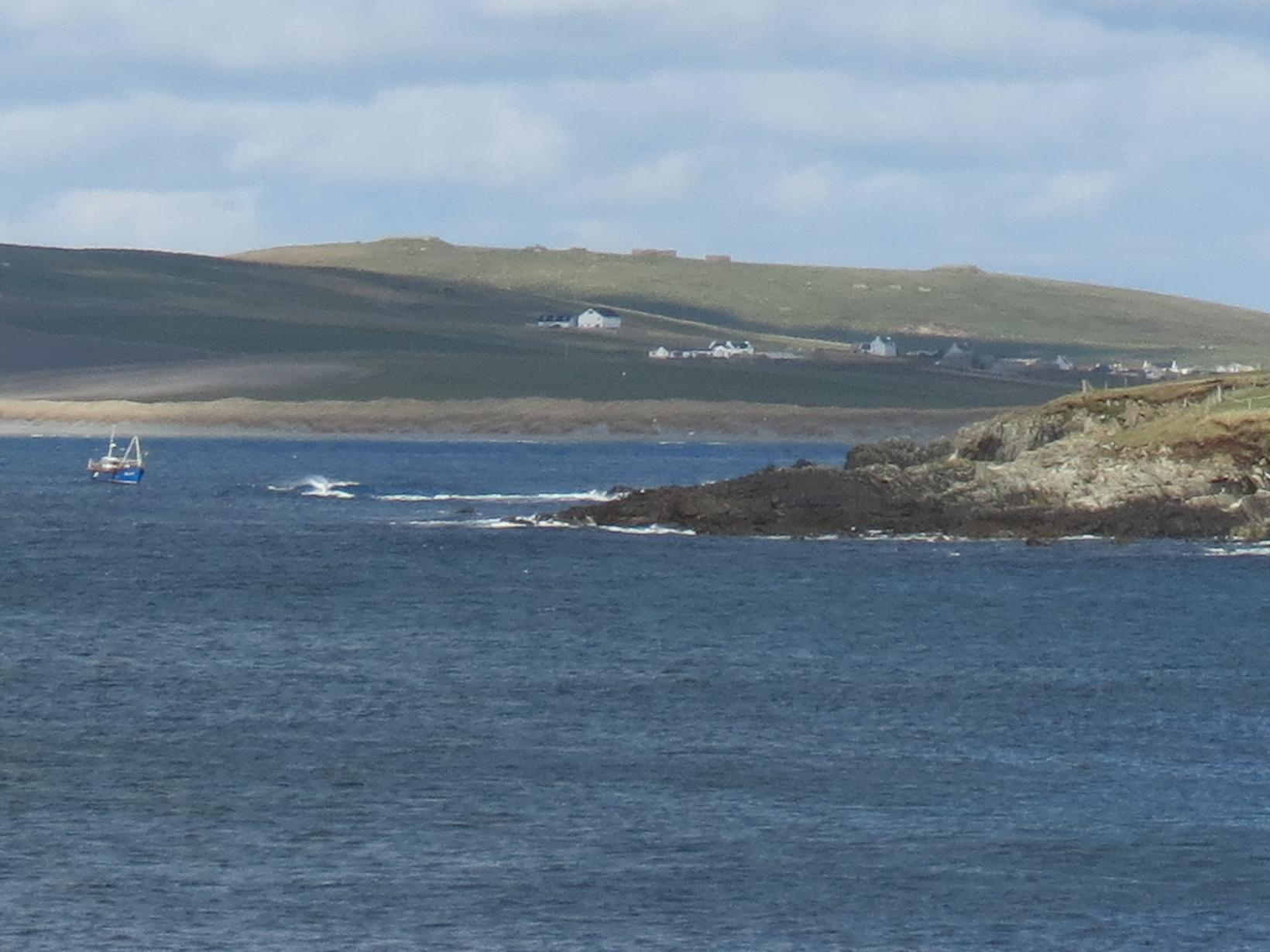 Housesitting assignment in Sumburgh, United Kingdom
