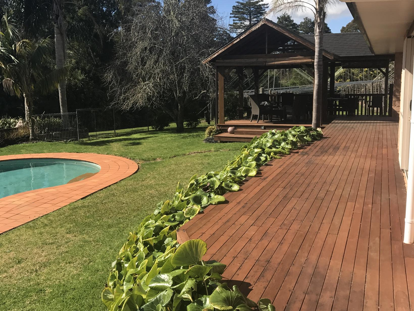 Housesitting assignment in Kerikeri, New Zealand