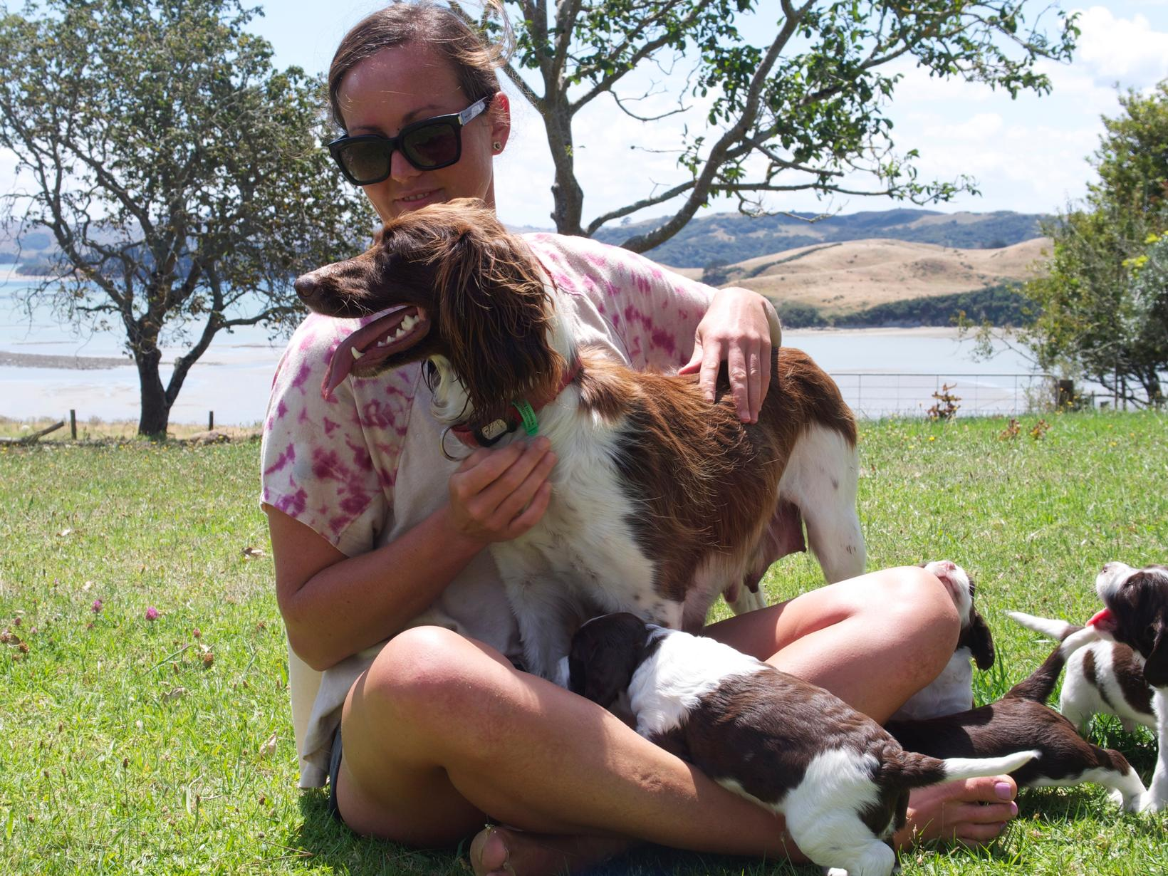 Clare from Cambridge, New Zealand