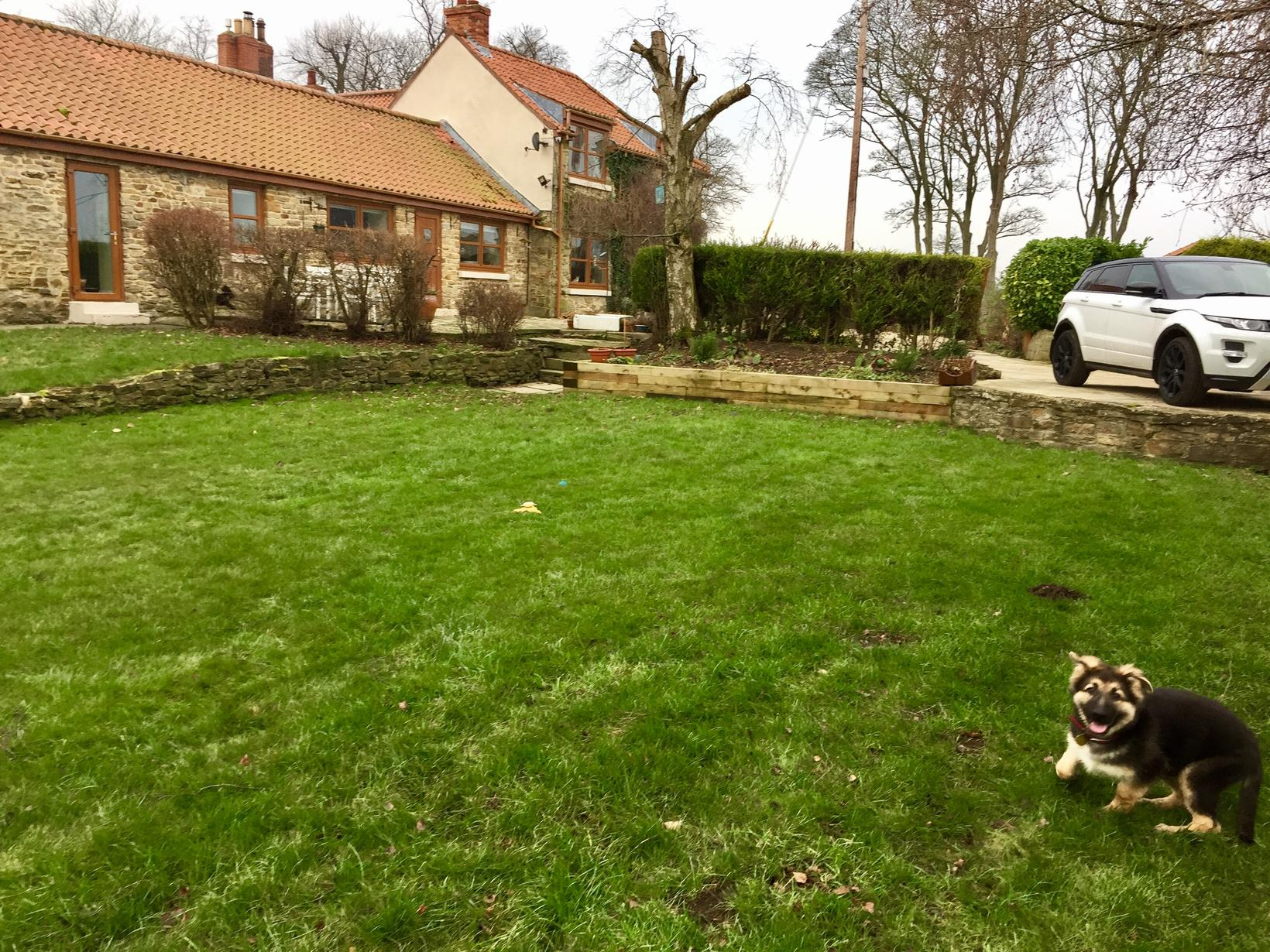 Housesitting assignment in Durham, United Kingdom