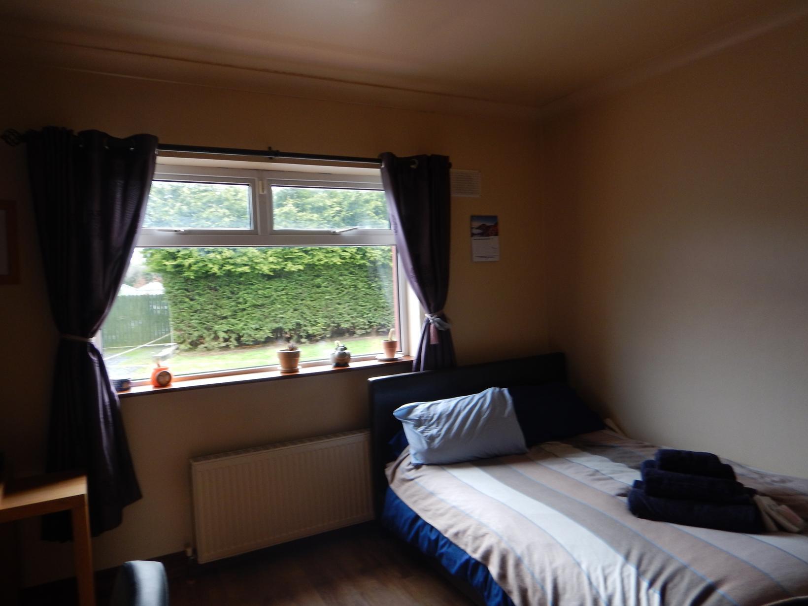 Housesitting assignment in Carbury, Ireland