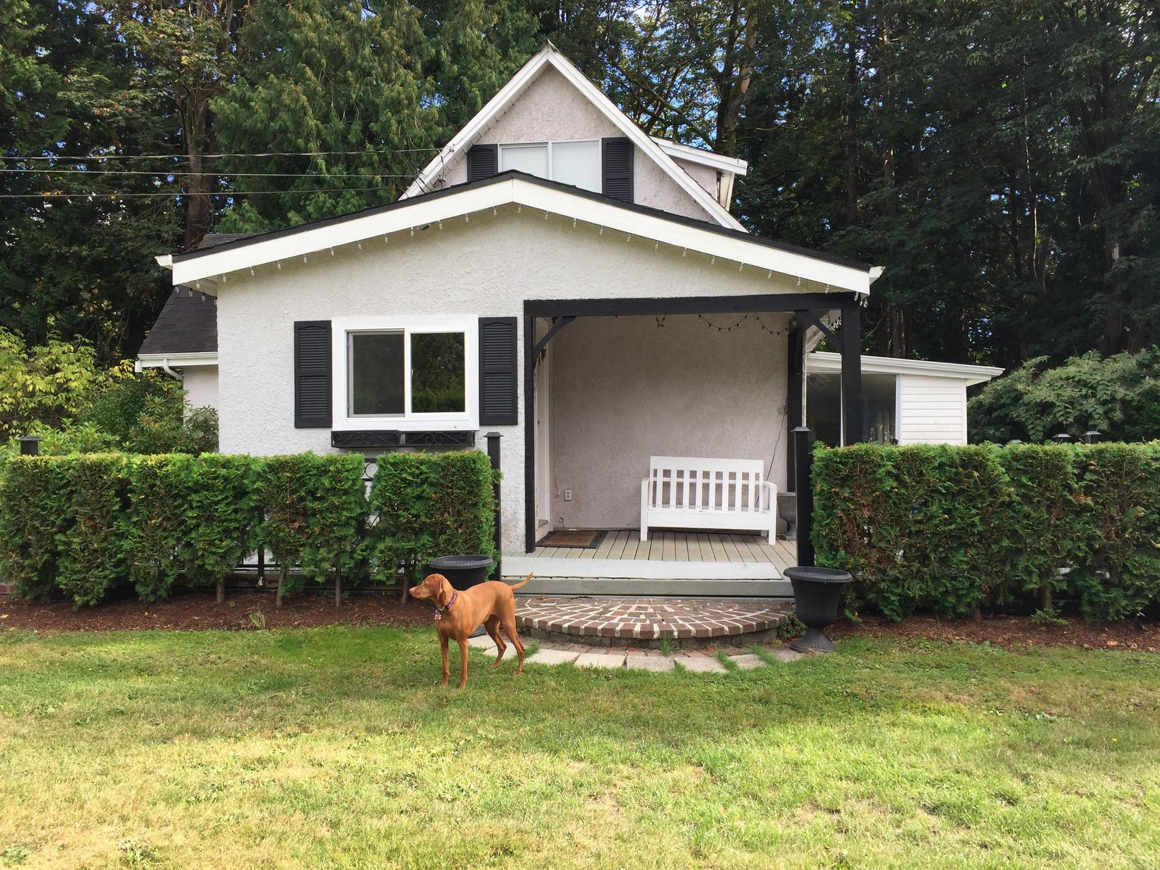 Housesitting assignment in White Rock, BC, Canada