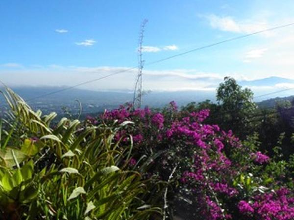 Housesitting assignment in San José, Costa Rica